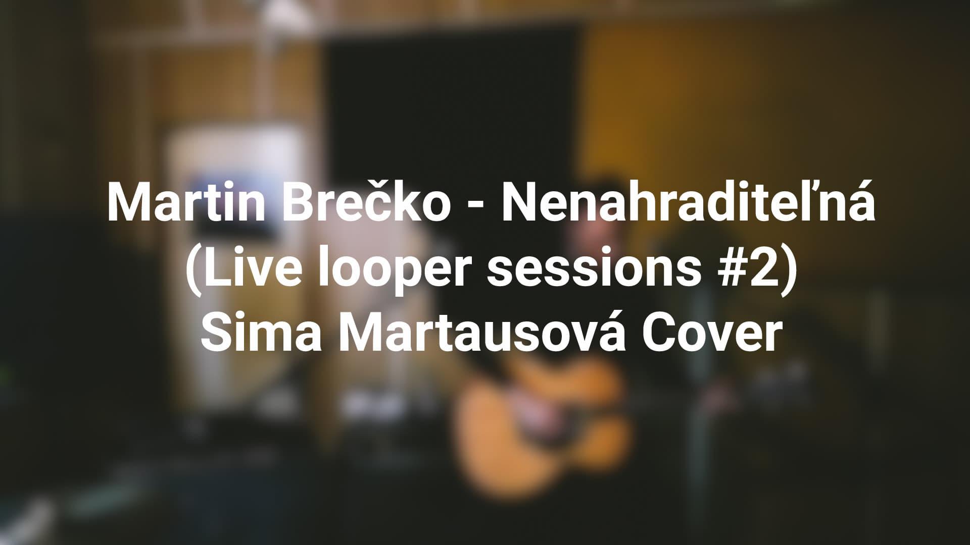 Martin Brečko – Nenahraditeľná Cover (Live looper sessions #2)